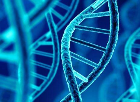 Las claves del futuro- de Homo sapiens a Homo Deus